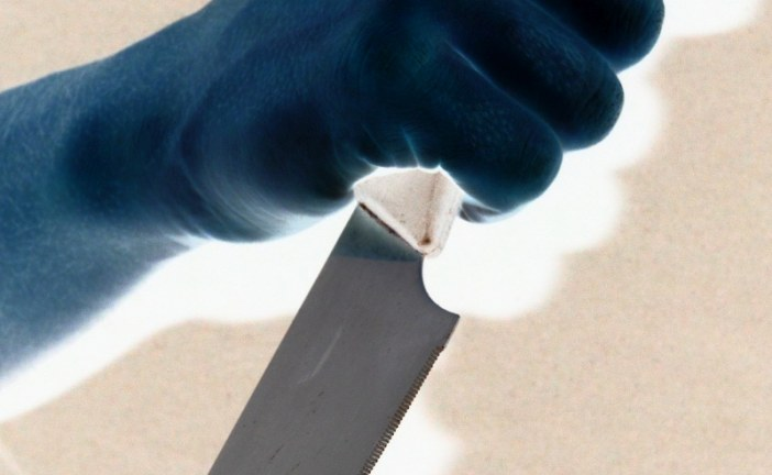 06.02.2019 AT Dornbirn: tödlicher Messerangriff auf Mitarbeiter der Asylbehörde