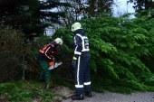 Feuerwehr im Dauereinsatz / AT Salzburg