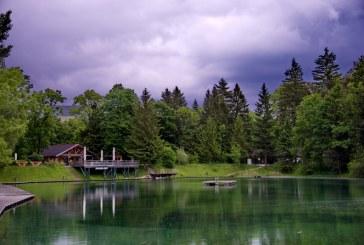Waldbad Anif hat geöffnet / AT Salzburg