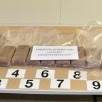 """Polizeihund """"Kiara"""" erschnüffelte Drogen in der Stoßstange / AT Salzburg"""