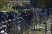 Stronach/Hagen verlangt 48-Stunden-Frist für Asylverfahren / AT