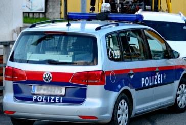 Über 6 Stunden festgenommen wegen Aufklebepickerl / AT Wien