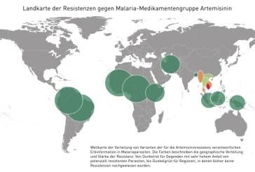 Weltweite Landkarte der Resistenzen gegen Malaria-Medikamentengruppe Artemisinin / AT Wien