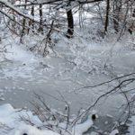 25.02.2019 RO Sibiu: Winterimpressionen rund um Hermannstadt