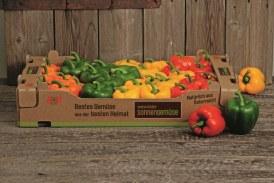 20.11.2019 AT: österreichische Gemüsebauern sind mit der Bilanz sehr zufrieden.